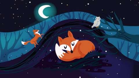 Graphic design of a fox sleeping