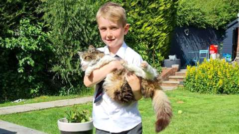 Frankie the cat with seven-year-old Remy