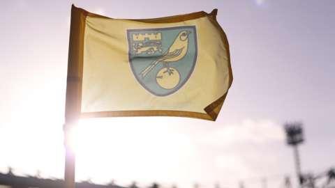 Norwich City corner flag