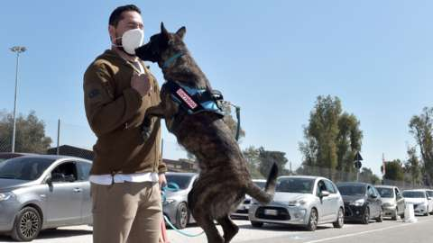 A Covid-sniffing dog being trained in Rome
