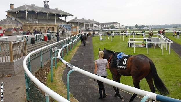Horses being paraded in front of an empty stand