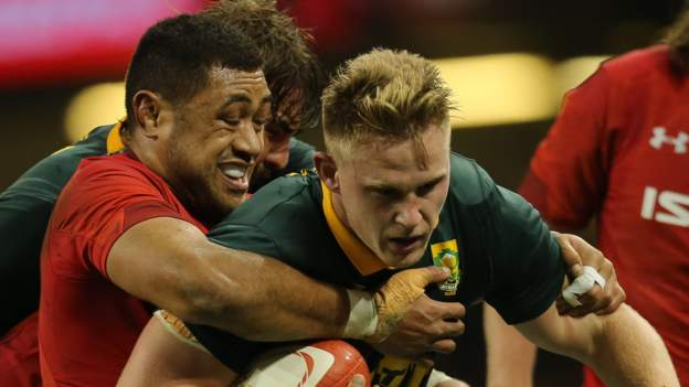 Doubts quashed over Wales v South Africa