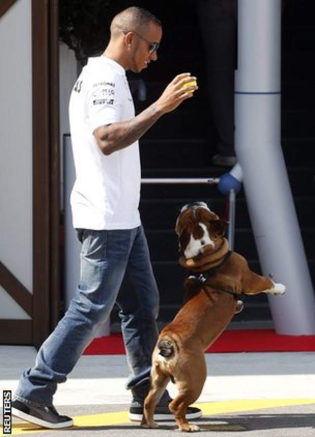 Lewis Hamilton and pet dog Roscoe at Monza