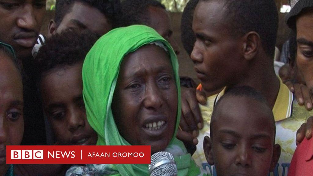 Walitti bu'iinsa daangaa Oromiyaa fi Somaalee irratti qabxiilee