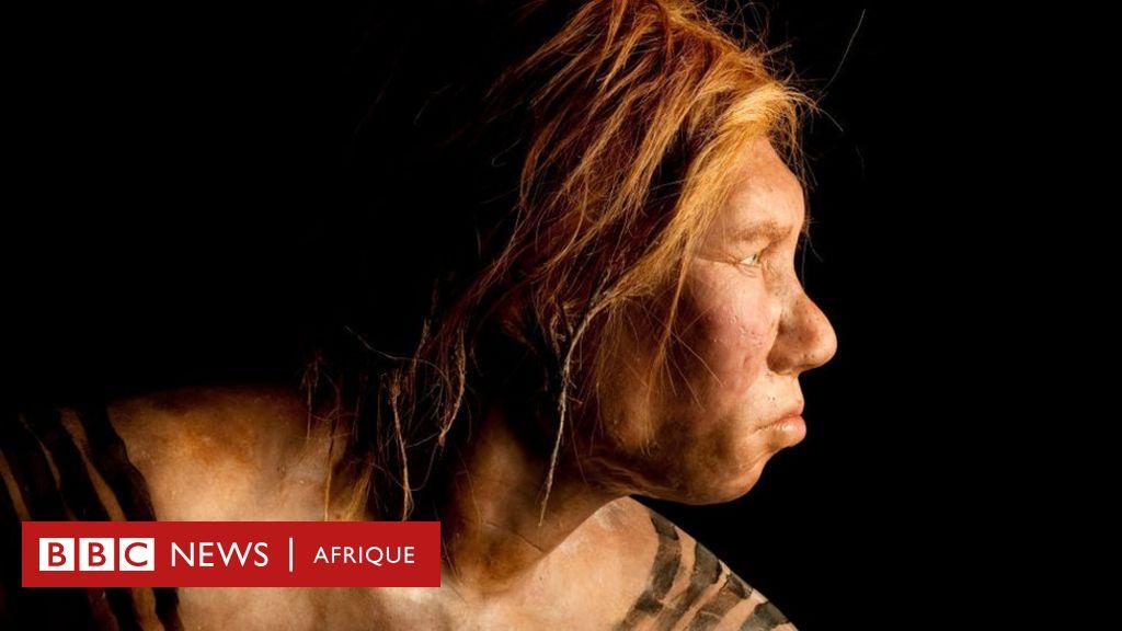 Comment l'empreinte génétique des Néandertaliens influence notre vie quotidienne