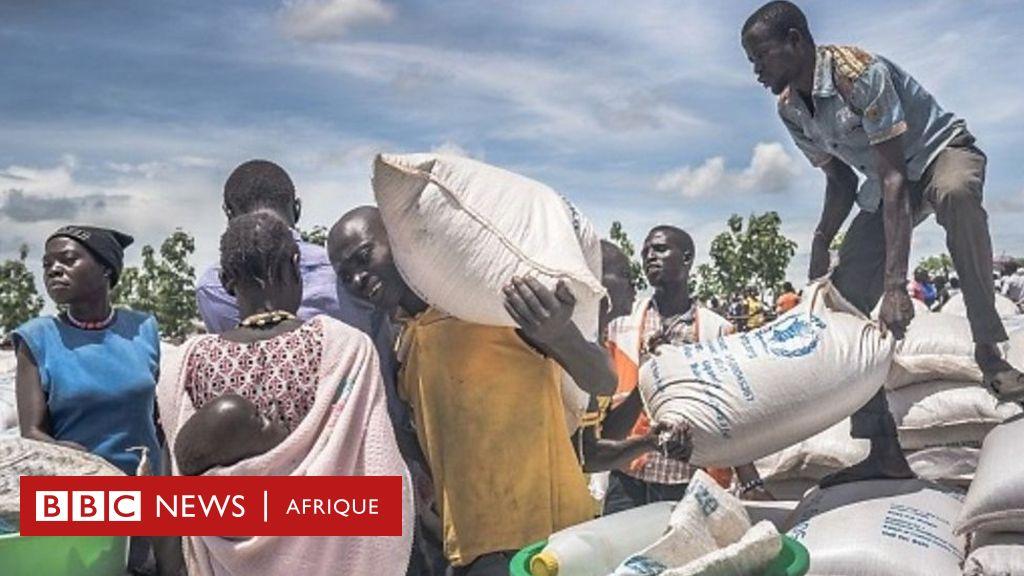 Aide du Japon au PAM pour le Tchad