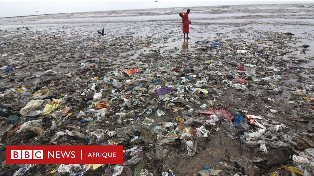 Les emballages des plats à emporter polluent les océans - BBC News Afrique