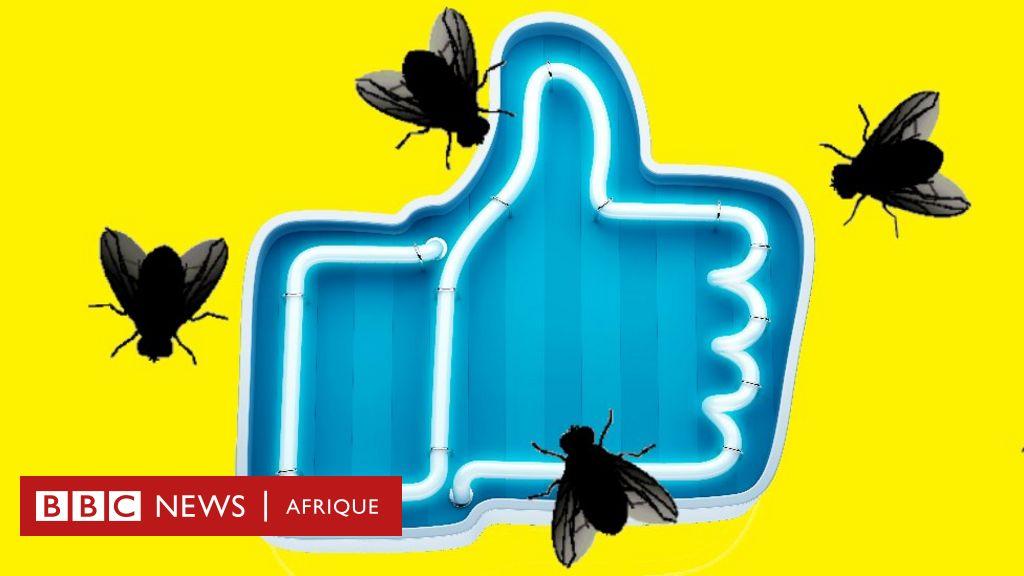 Manifestation en Algérie: comment la désinformation s'est propagée sur les médias sociaux