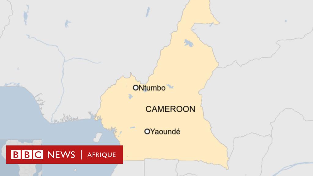 Au moins 22 morts dans une attaque au Cameroun