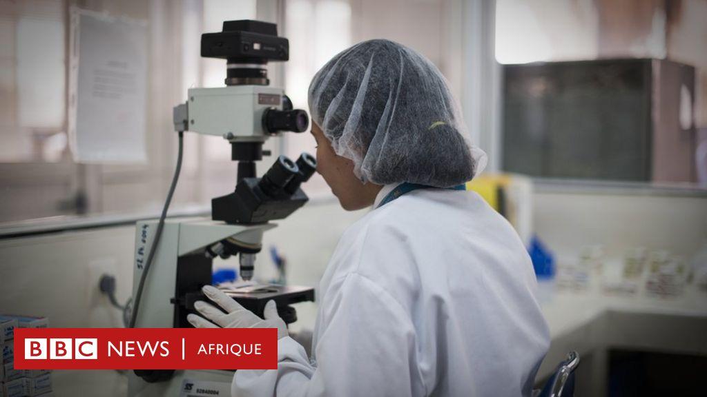 L'Algérie débarrassée du paludisme