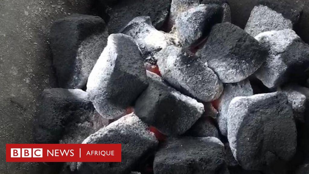 Afrique Avenir : Du charbon bio à base de cabosse de cacao et de jacinthe d'eau