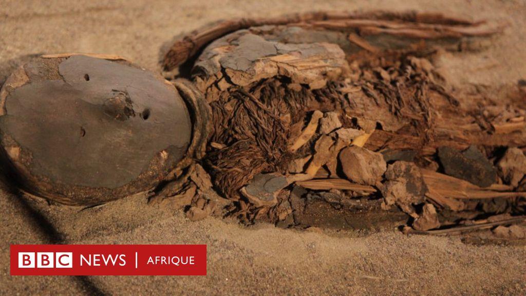 """L'histoire fascinante de la """"culture Chinchorro"""" qui momifiait ses morts plus de 2 000 ans avant les Égyptiens - BBC News Afrique"""