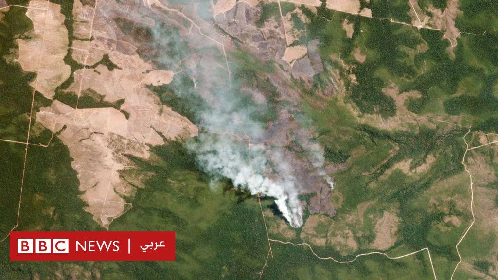 حرائق غابات الأمازون: ما الذي يمكن أن تتسبب فيه الحرائق غير المسبوقة منذ عشر سنوات؟