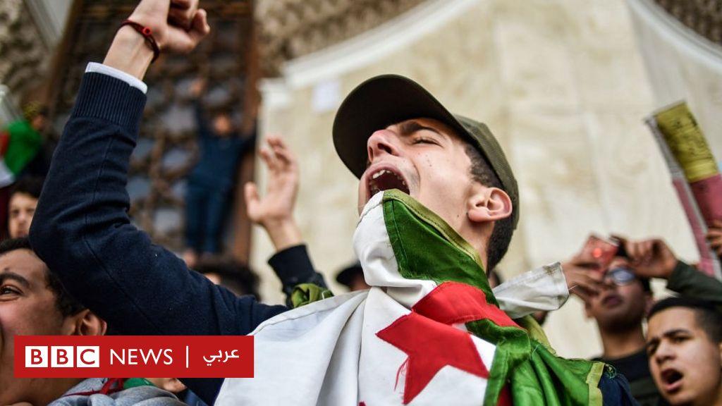 حراك الجزائر: وثائقي فرنسي يثير أزمة أم مجرد زوبعة في فنجان؟ - BBC News Arabic