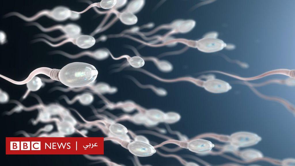 هل الرجال على استعداد لتناول حبوب منع الحمل؟