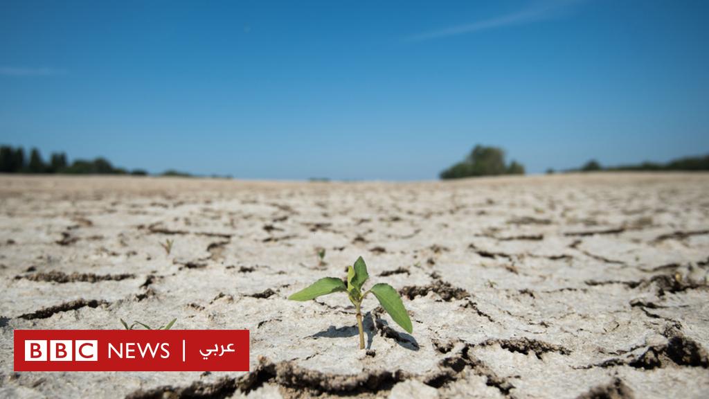 التغير المناخي:  ارتفاع غير مسبوق  في درجات الحرارة خلال السنوات العشر الأخيرة - BBC News Arabic