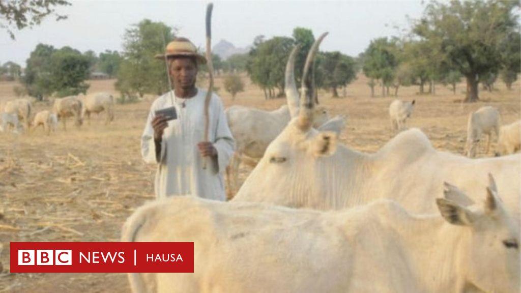 Amurka na sasanta manoma da makiyaya a Nigeria - BBC News Hausa