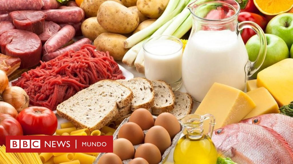 dieta de solo proteinas y verduras