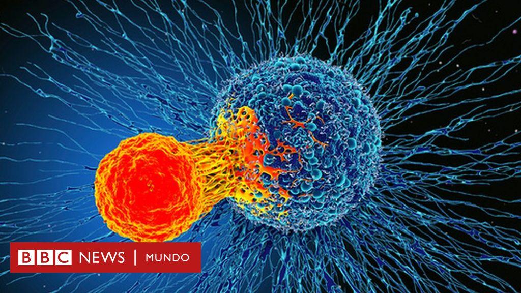 cáncer de próstata e inmunoterapias