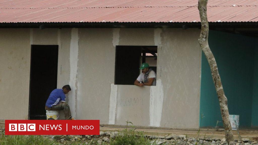 Hotel casa verde la sorprendente idea de la guerrilla de for Idea casa latina