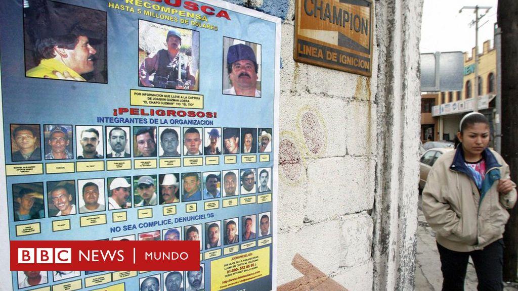 Por Qué Los Carteles Del Narcotráfico En México Se Parecen A