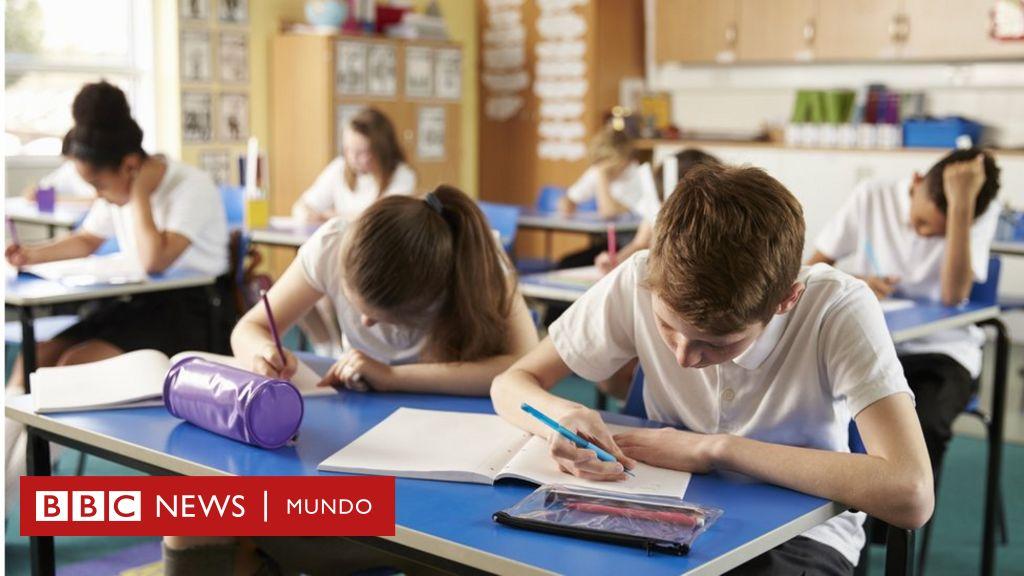 ¿Cuál debe ser la prioridad de los colegios en sus sistemas educativos?
