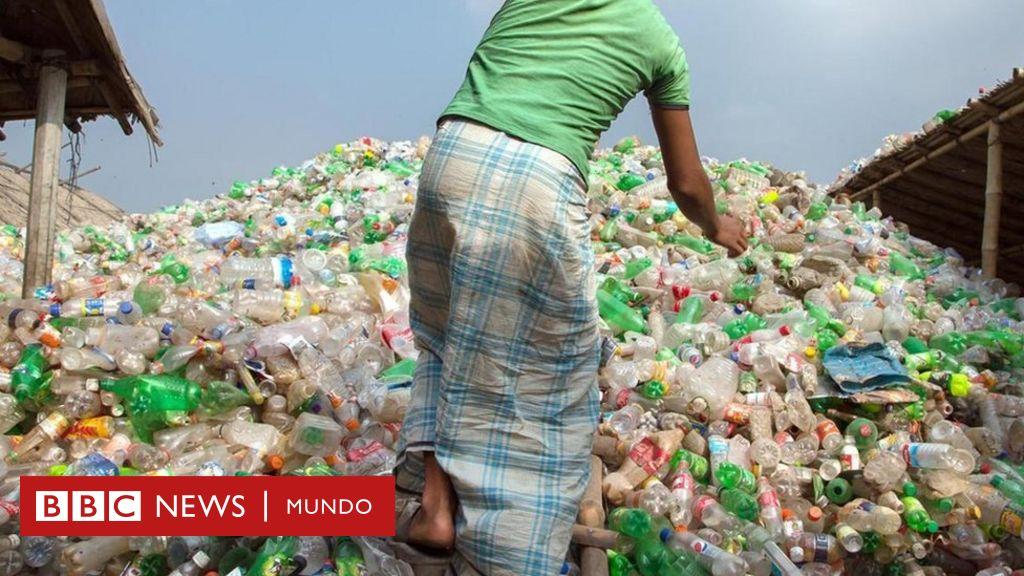 Realmente Costaría Cuánto Envases Plástico Bbc Dejar De Usar jSzqUGLMVp