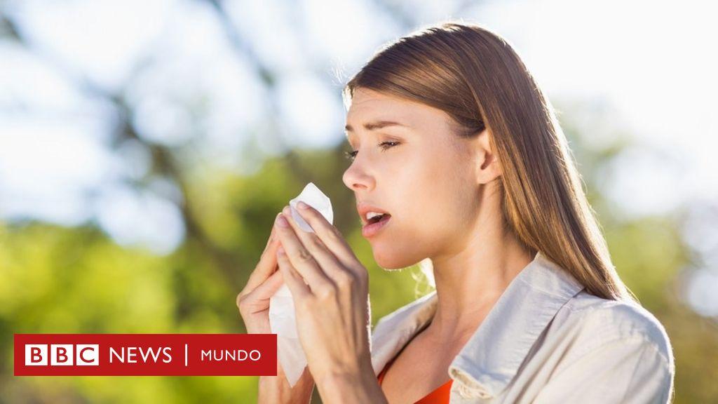 pueden mejorar las alergias al polen