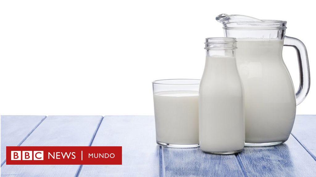 suero de leche líquido valor nutricional