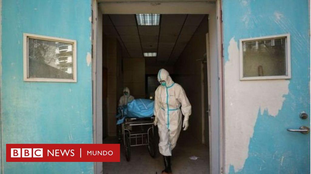 """Por qué es tan importante conocer la identidad del """"paciente cero"""", el primer humano en infectarse con el coronavirus"""