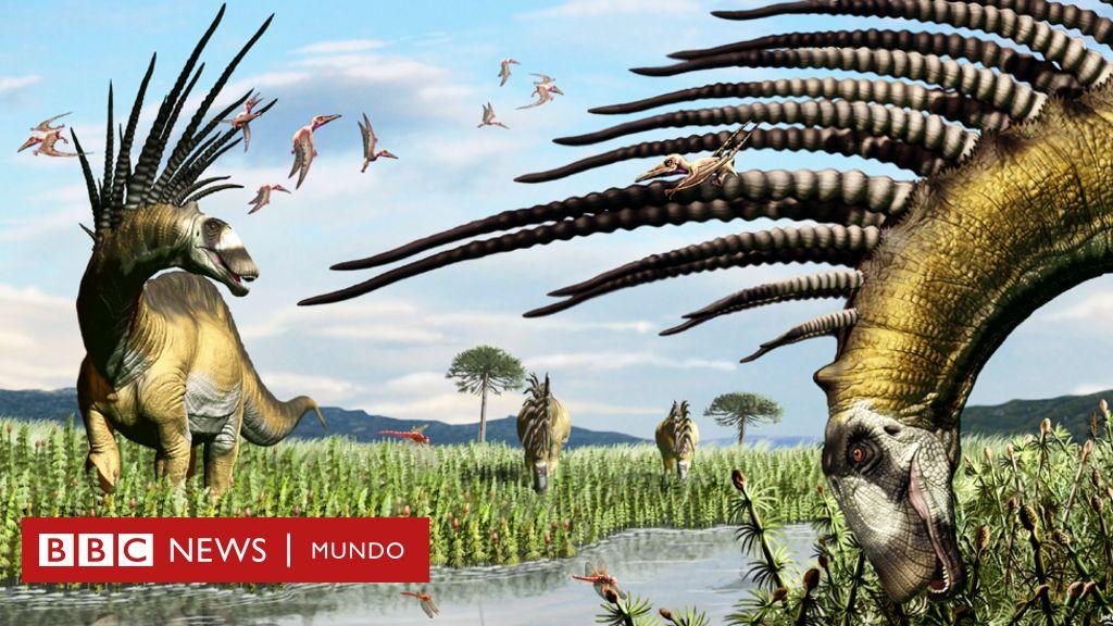 El Dinosaurio Descubierto En Argentina Que Tenia Un Abanico De Espinas Gigantes Para Defenderse Bbc News Mundo En este capitulo nos centramos en el prognathodon un. el dinosaurio descubierto en argentina