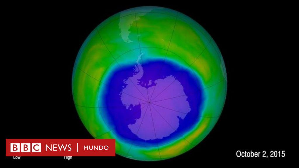 Cuáles son las razones por las que la capa de ozono se está \