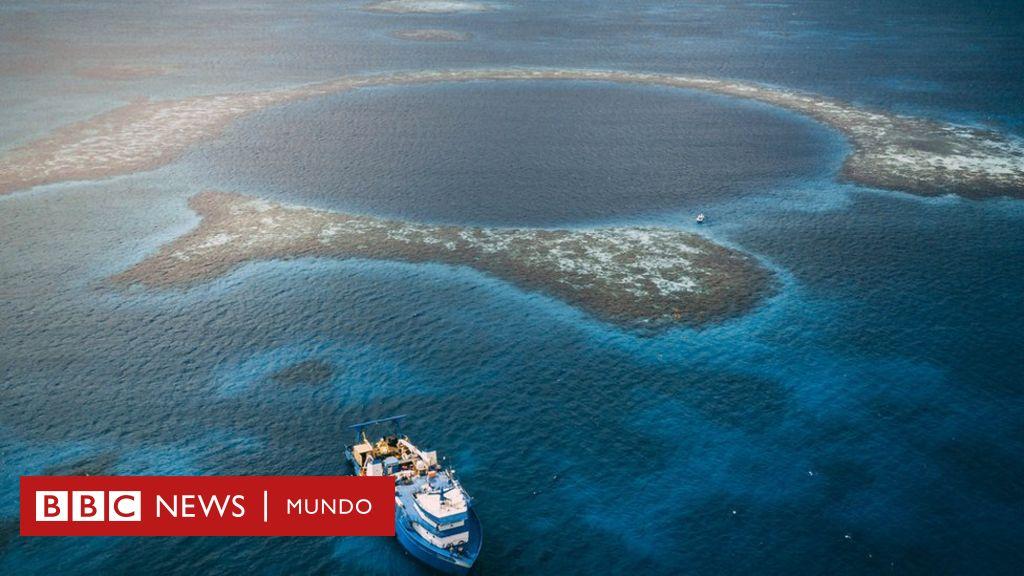 Gran Agujero Azul De Belice Los Fascinantes Hallazgos En El Sumidero Más Grande Del Mundo Bbc News Mundo