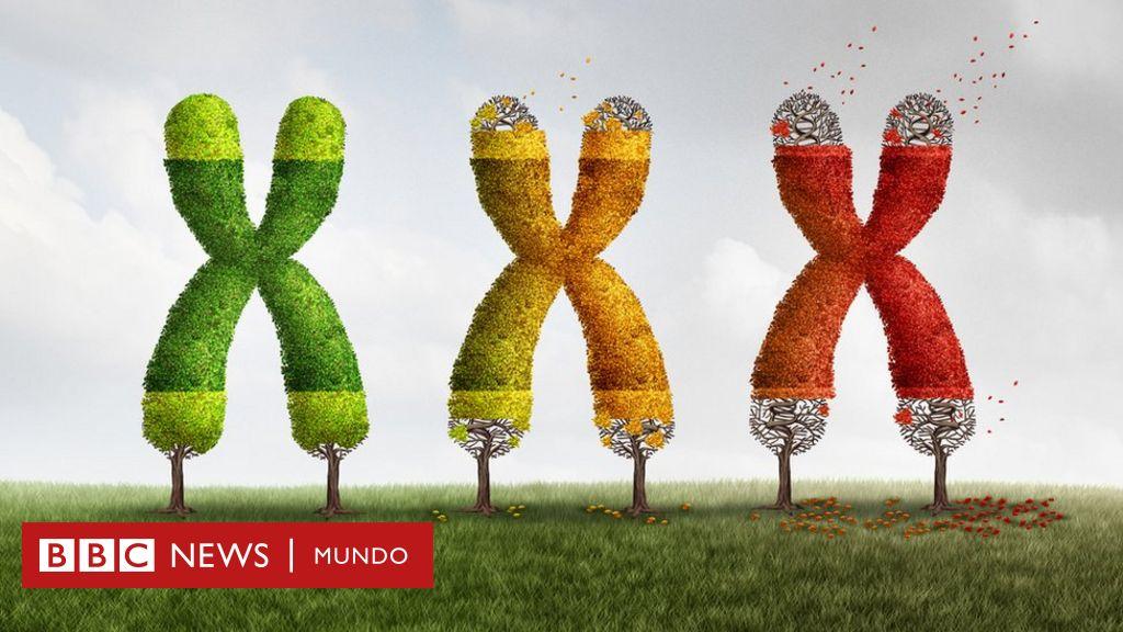 BBC Mundo Salud y Nutrición cover image