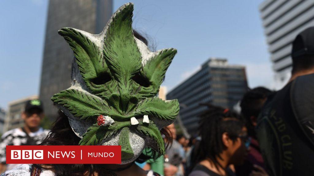 Tacha Buchón Encobijado Cómo El Mundo De Los Narcos Se Ha Infiltrado En El Español De México Bbc News Mundo