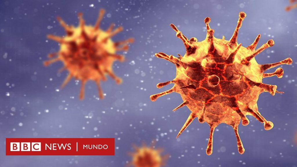por que razones los virus no estan vivos