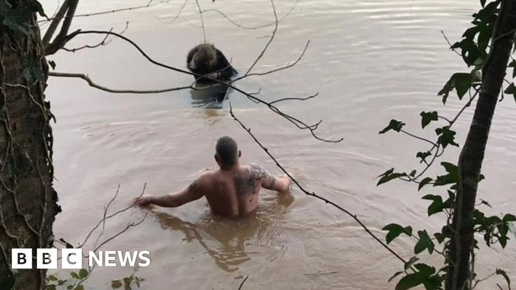 Men tell of the rescue of the woman from the car under the water-roof
