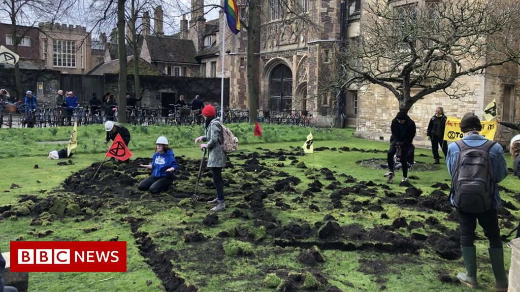 Cambridge's Trinity College lawn dug up by Extinction Rebellion