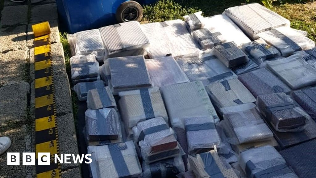 'Irreplacable' stolen books recovered in Romania