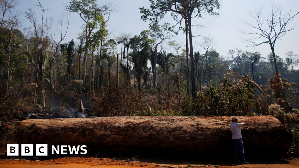Bolsonaro calls Amazon deforestation data 'lies'