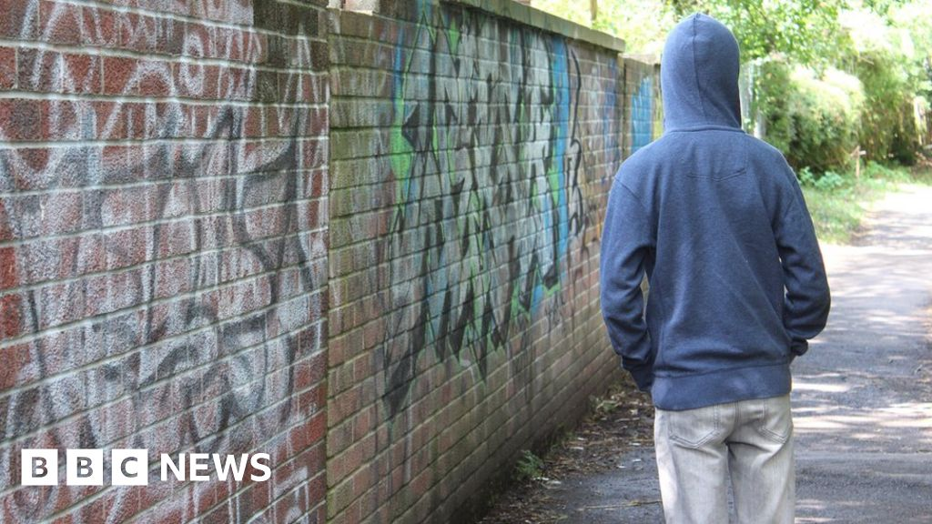 Cardiff youth offending service 'inadequate'