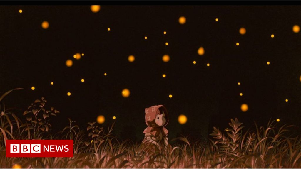 Grave Of The Fireflies The Haunting Relevance Of Studio Ghibli S