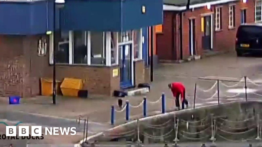 Cat Rescued From London Docks