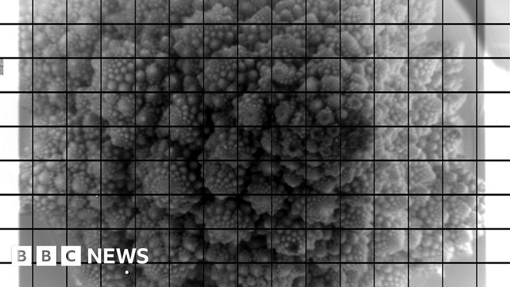 Vera Rubin: Super telescope's giant camera spies broccoli
