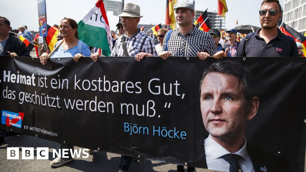 Germany to spy on extreme wing of far-right party