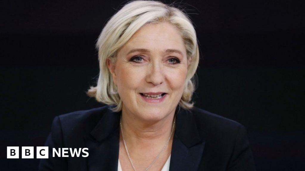 France elections: Le Pen steps aside as National Front leader