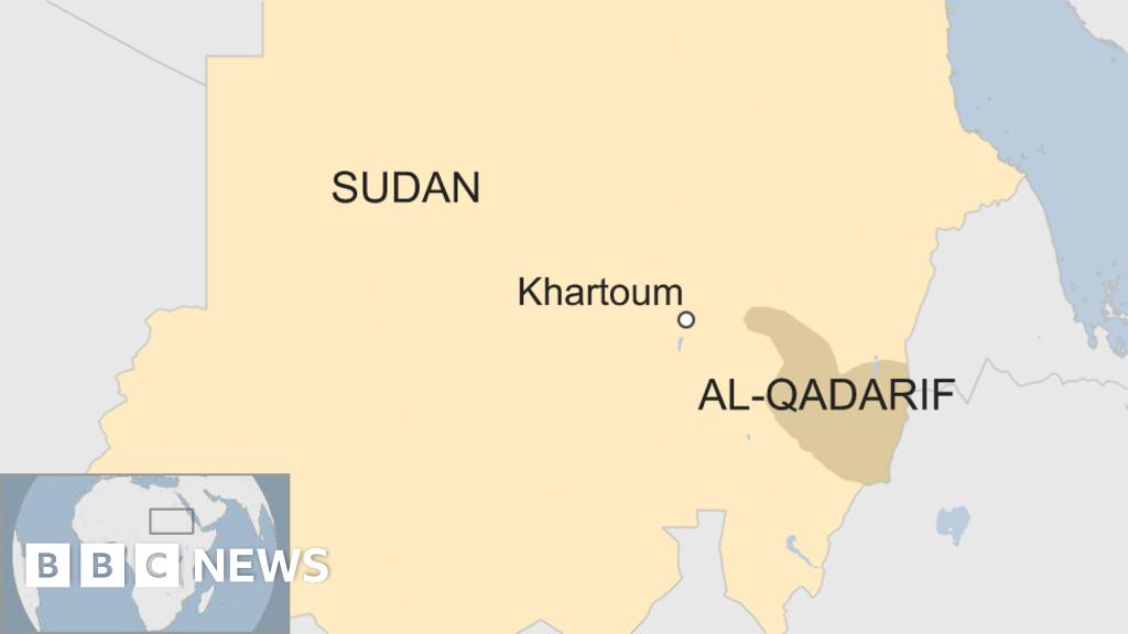 Sudan Helicopter Crash Kills Officials Bbc News
