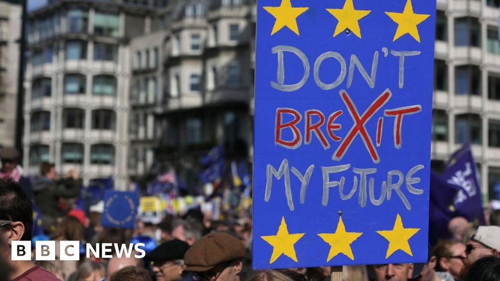 Britons take EU rights bid to Dutch court