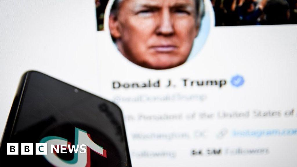 , Donald Trump-era ban on TikTok dropped by Joe Biden, Saubio Making Wealth