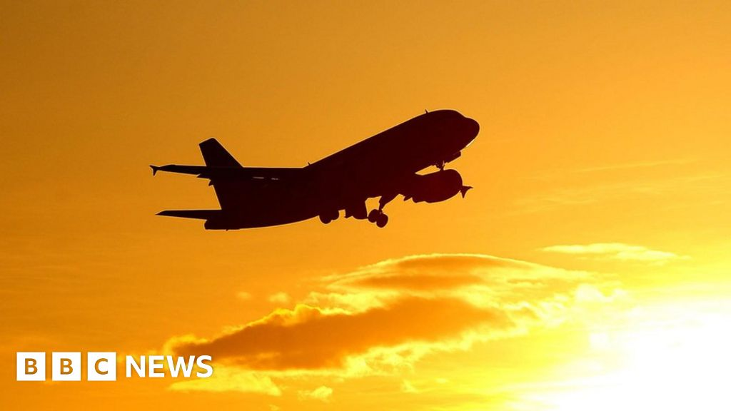 Aviation industry buckles up for turbulent times